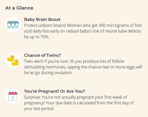 1 and 2 weeks pregnancy