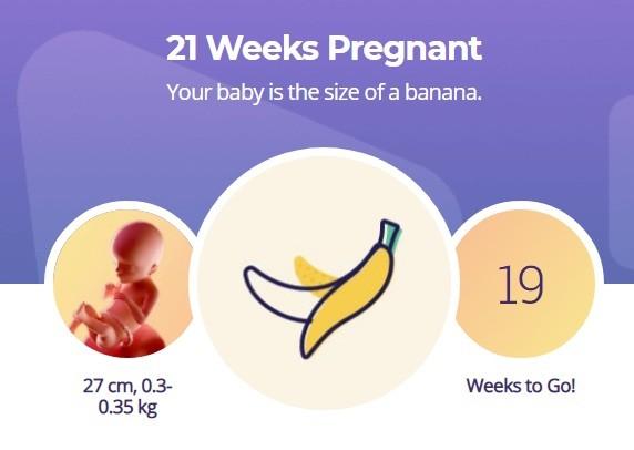 21 week pregnancy