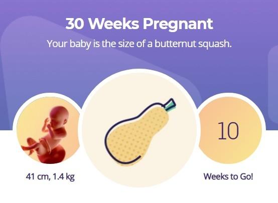 30 week pregnancy