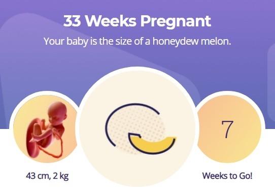 33 week pregnancy