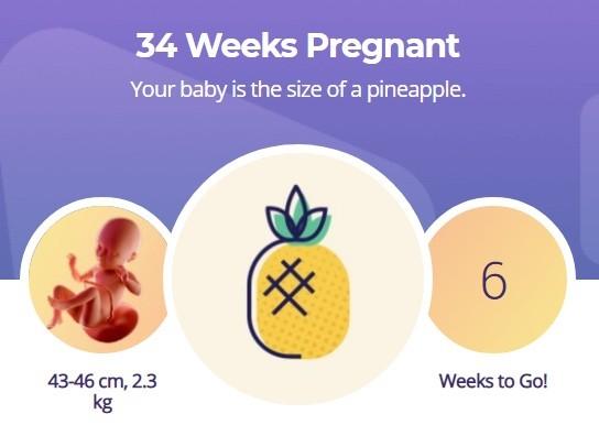 34 week pregnancy