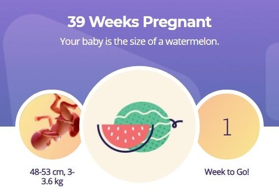 39 week pregnancy