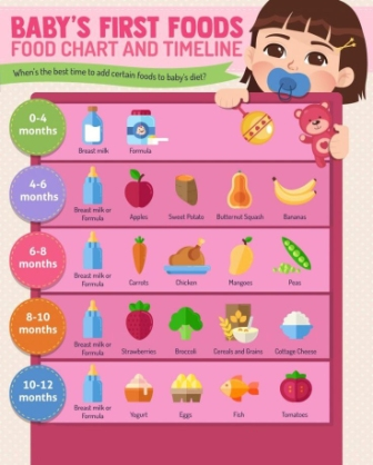 Baby first foods. Food chart and timeline